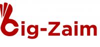 logo Big-Zaim
